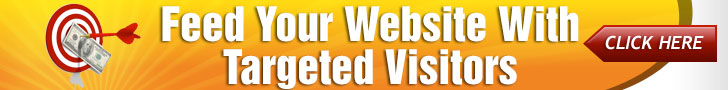 targeted website visitors